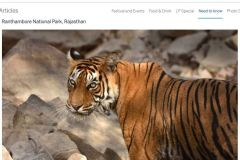 Tiger image in Lonelyplanet